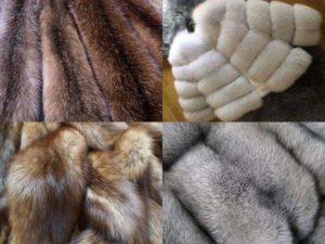 Разновидности меха: норка, песец, кролик, соболь